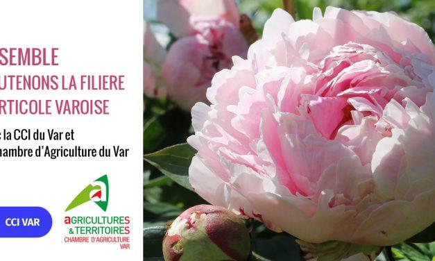 La Chambre de Commerce et d'Industrie du Var et la Chambre d'Agriculture du Var, ensemble pour soutenir le secteur horticole varois