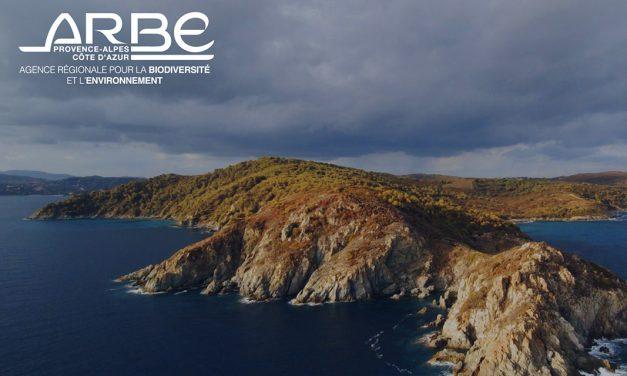2021 : une année riche en projets pour l'Agence régionale pour la biodiversité et l'environnement (ARBE)